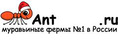Муравьиные фермы AntFarms.ru - Одинцово